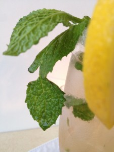 Mint-w-lemon1